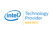 Intel Technology Provider Gold 2017